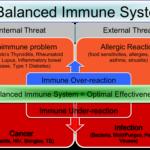 immune system balance